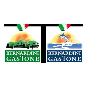 BERNARDINI GASTONE SRL logo